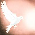 Dove In Flight Red by Yo Pedro