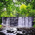 Dove Lake Waterfall At Gladwyne by Bill Cannon