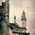 Dove Landing On Church by Jill Battaglia