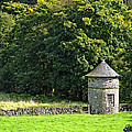 Dovecote At Swainsley Near Warslow by Rod Johnson