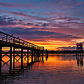 Down At The Dock by Patricia Davidson
