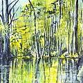 Down On The Bayou by Carol Wisniewski