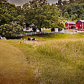 Down On The Farm by Bill Wakeley