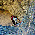 Down The Ladder In Big Painted Canyon Trail In Mecca Hills-ca  by Ruth Hager