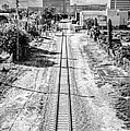 Down The Tracks - Downtown Miami - Black And White by Ian Monk