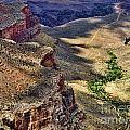 Down The Trail by Brenda Kean