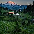 Down The Valley To Rainier by Mike Reid