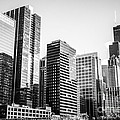 Downtown Chicago Buildings In Black And White by Paul Velgos