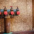 Downtown Extinguisher  by Melinda Ledsome