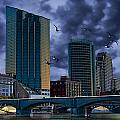 Downtown Grand Rapids Michigan By The Grand River With Gulls by Randall Nyhof