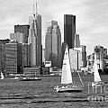 Downtown Skyline Of Toronto On by Bill Cobb