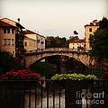 Downtown Vicenza by Donato Iannuzzi