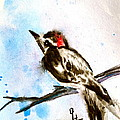 Downy Woodpecker Sumi-e by Beverley Harper Tinsley