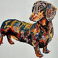 Doxie by Debbie Sampson