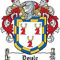 Doyle Coat Of Arms Wicklow Ireland by Heraldry
