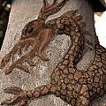 Dragon by Jason Swantek