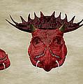 Dragon King by Martin Capek