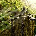 Dragon Land by Viny Mathew