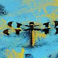 Dragonfly 2 by Shirley Moravec