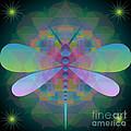 Dragonfly 2013 by Kathryn Strick