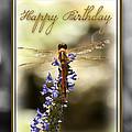 Dragonfly Birthday Card by Carolyn Marshall