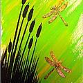 Dragonfly Dreams by Darren Robinson