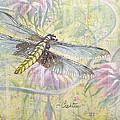 Dragonfly Fantasy by Elizabeth Crabtree