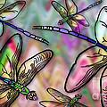 Dragonfly Land by Ruta Naujokiene