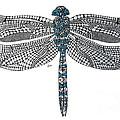 Dragonfly by Leanne Karlstrom