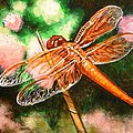 Dragonfly On Grass by Gayle Utter