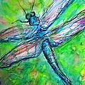 Dragonfly Spring by M c Sturman