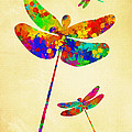 Dragonfly Watercolor Art by Christina Rollo
