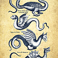Dragons - Historiae Naturalis  - 1657 - Vintage by Aged Pixel