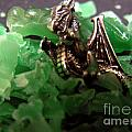 Dragon's Hoard  by Kami Catherman