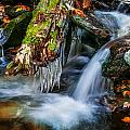 Dragons Teeth Icicles Waterfall Great Smoky Mountains Painted  by Rich Franco