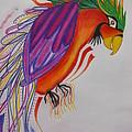 Dream Bird by Hannah Myjak