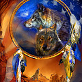Dream Catcher - Wolf Dreams Patriotic by Carol Cavalaris