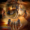 Dream Catcher - Wolfland by Carol Cavalaris