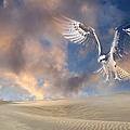 Dream Hawk by Georgiana Romanovna