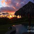 Dream Sunset In Costa Rica by Teresa Zieba