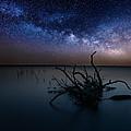 Dreamscape by Aaron J Groen