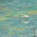Dreamy Bird by Alina Martinez-beatriz