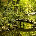 Dreamy Japanese Garden by Sebastian Musial