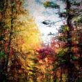 Dreamy Nature Walk by Tina Baxter