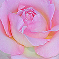Dreamy Pink by Dave Mills