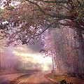 Dreamy Pink Nature Landscape - Surreal Foggy Scenic Drive Nature Tree Landscape  by Kathy Fornal