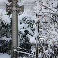 Dreamy Snowy Cross by Teresa Mucha