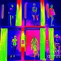 Dressing Room Divas by Ed Weidman