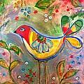 Drew Bird by D Fi