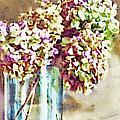 Dried Autumn Hydrangeas - Digital Paint by Debbie Portwood